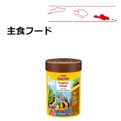 【熱帯魚/低層魚フード】ビーパチップス 100ml/37g