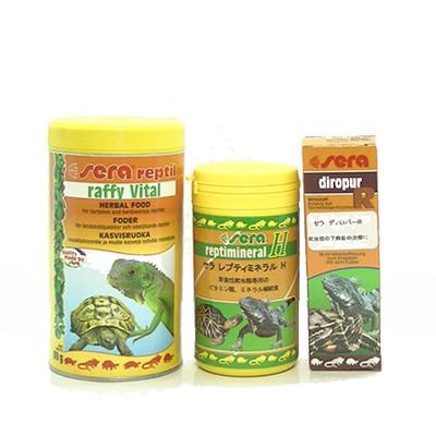 オープンSALE 草食性爬虫類用セット