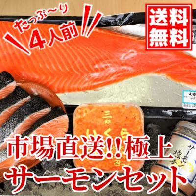 【送料無料】豊洲市場直送!極上サーモンセット