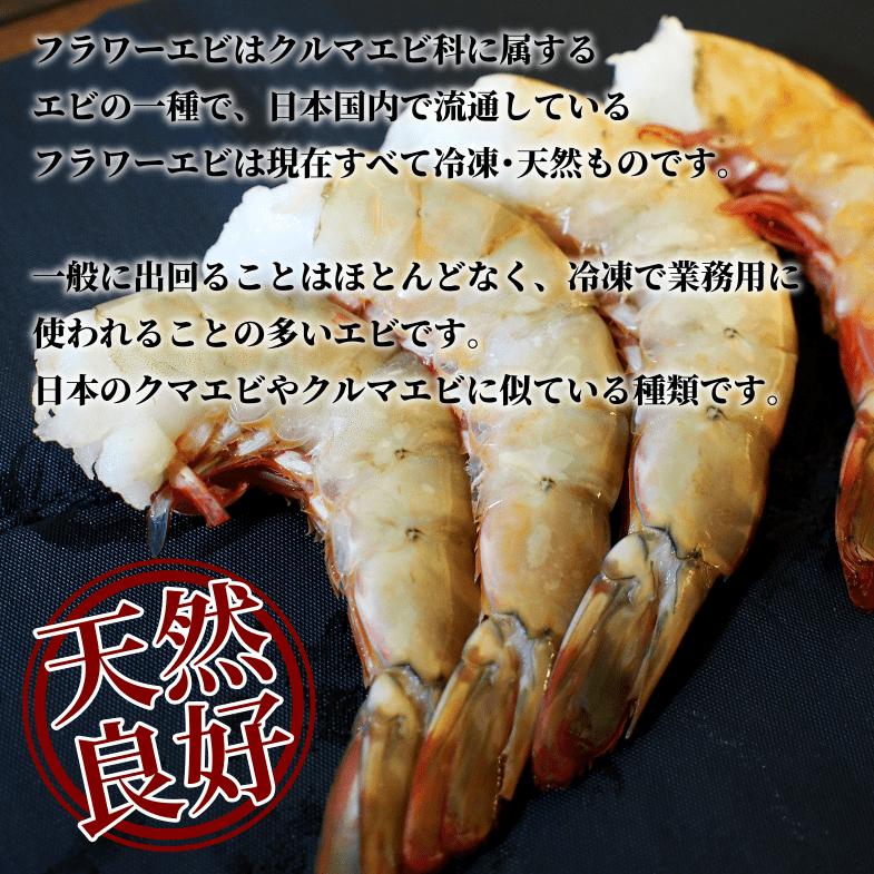 フラワーエビはクルマエビ科に属するエビの一種で、日本国内で流通しているフラワーエビは現在すべて冷凍・天然ものです。一般に出回ることはほとんどなく、冷凍で業務用に使われることの多いエビです。日本のクマエビやクルマエビに似ている種類とされています。