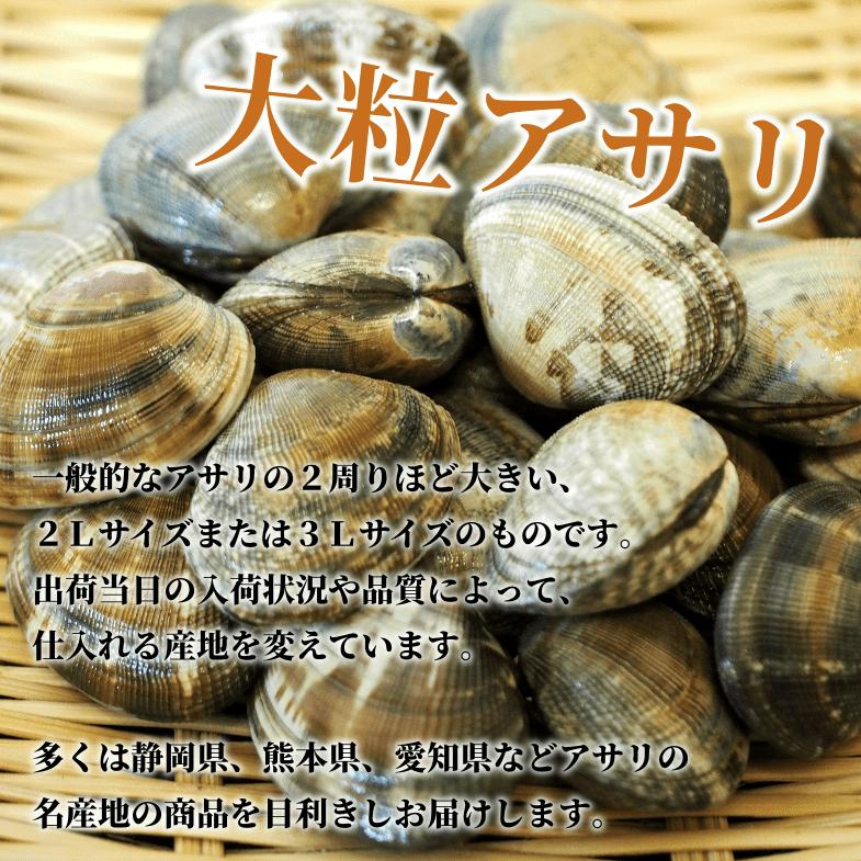 一般的なアサリの2周りほど大きい、2Lサイズまたは3Lサイズのものです。出荷当日の入荷状況や品質によって、仕入れる産地を変えています。多くは静岡県、熊本県、愛知県などアサリの名産地の商品を目利きしお届けします。