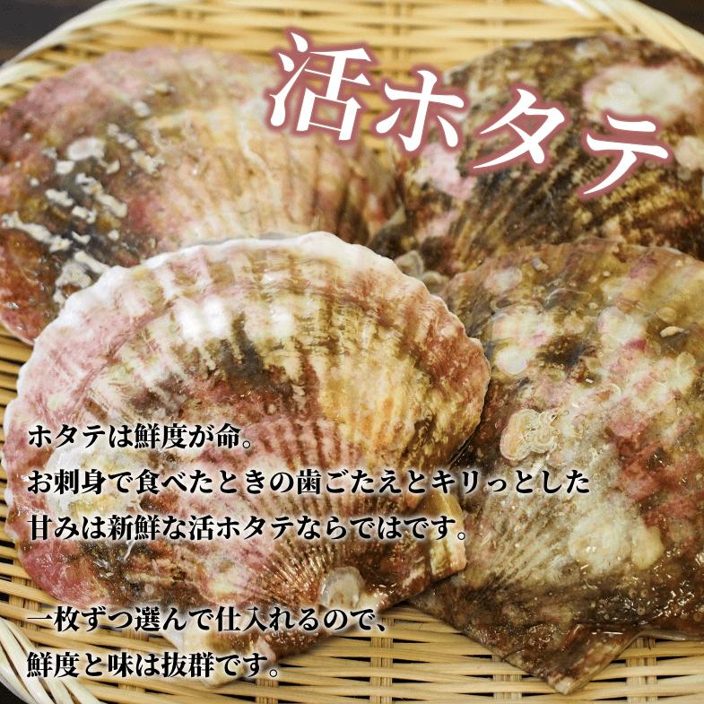 ホタテは鮮度が命。お刺身で食べたときの歯ごたえとキリっとした甘みは新鮮な活ホタテならではです。一枚ずつ選んで仕入れるので、鮮度と味は抜群です。