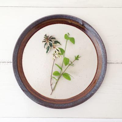 アメ釉プレート25cm パスタ皿 大皿  ディナープレート 陶器 日本製