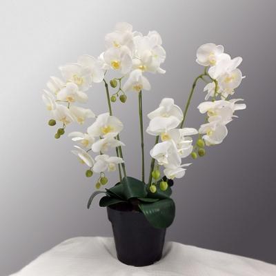 胡蝶蘭(造花)5本立ち