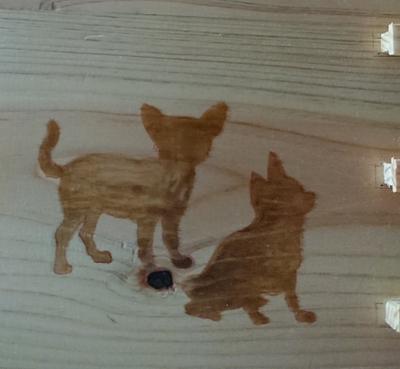 細川さん家の猫保護活動支援万年カレンダー(チワワ)