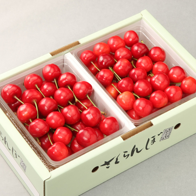 佐藤錦 500g×2(バラ)