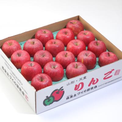 サンふじ 約5kg(10〜18玉)