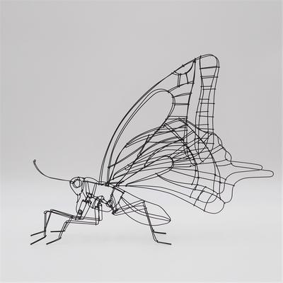 山田一成 swallowtail(アゲハチョウ)