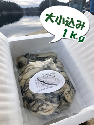 「水山牡蠣」【むき身、大小込、生食可】1kg