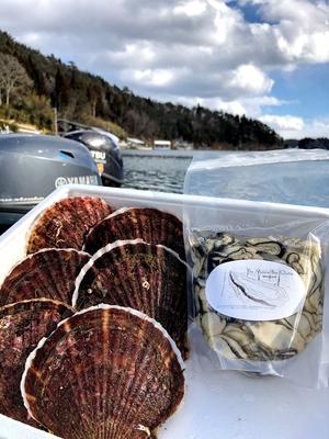 「水山牡蠣」(むき身 大小込み500g/1kg)、「活ほたて」(大6枚、むきヘラ付)セット <送料込み>