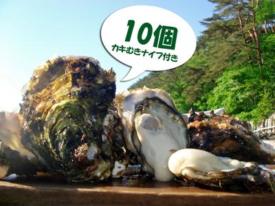 「水山牡蠣」【殻付M、生食可】10個
