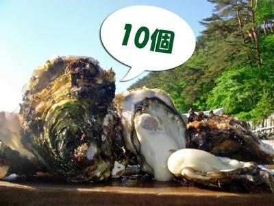 「水山牡蠣」【殻付、生食可】10個/20個