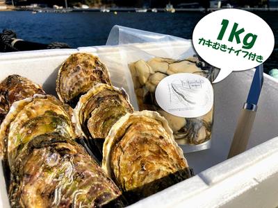 水山牡蠣(6個)、むき身(大小込)1kg