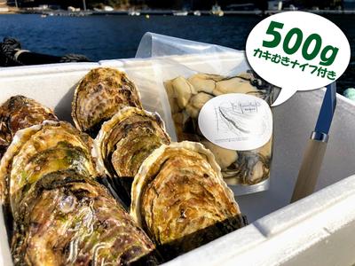 水山牡蠣(M)6、むき身(大小込)500g
