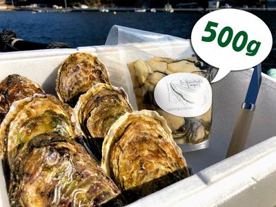 「水山牡蠣」殻付6個、むき身(500g/1kg)セット
