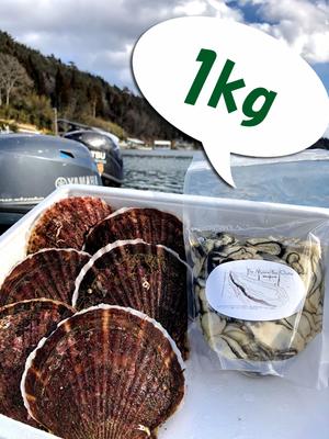 牡蠣むき身1kg、殻付きほたて大6枚