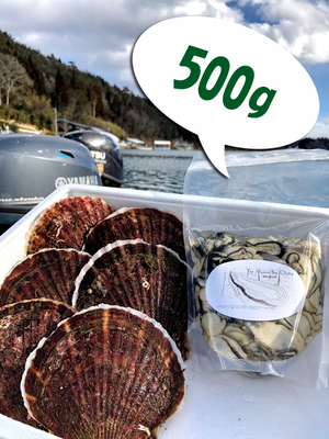牡蠣むき身500g、活ほたて(大)6