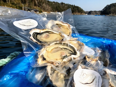 限定20セット!「水山牡蠣」ハーフシェル(片殻付き、冷蔵)6個/12個