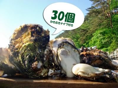 「水山牡蠣」【殻付、生食用】30個