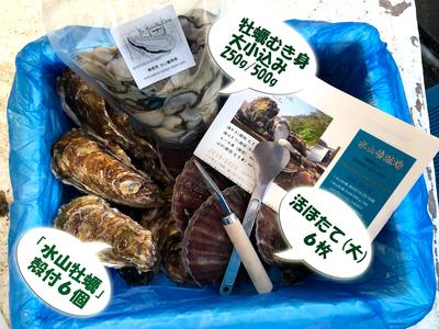 殻付き牡蠣(M)6、牡蠣むき身500g、活ほたて(大)6
