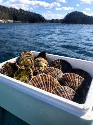 水山牡蠣(6)、活ほたて(中3)
