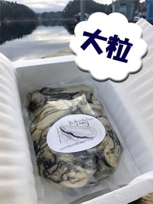 生食用牡蠣むき身 大粒 (500g、無加水)