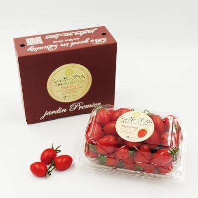 ミニギフト 高糖度ミニトマト シュガープラム 500g