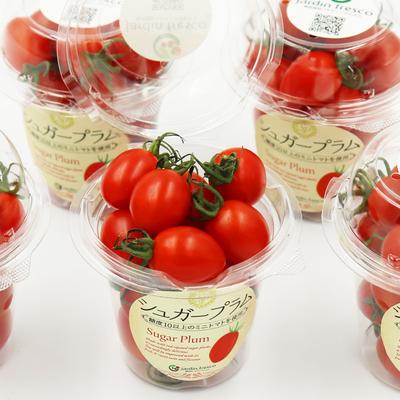 ★【数量限定】★ 高糖度ミニトマト『シュガープラム』170g×5パック