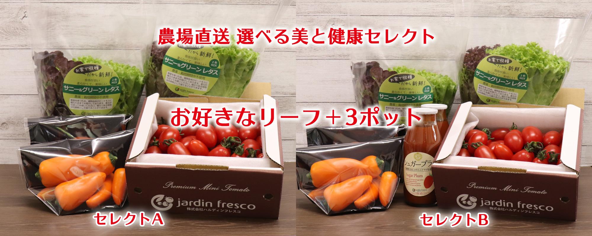 ハルディンフレスコの食材セレクトできる人気商品 選べる美と健康セレクト 再販のお知らせ