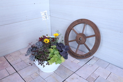 【30】ENTRANCE&BALCONY Seasonal Flowers