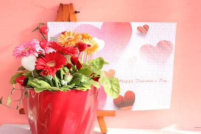 ガーベラ キャンディポップ3色MIX バレンタイン Twist赤鉢