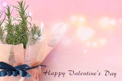 Ribbon Herb ♡Valentaine Gift♡(ローズマリー)