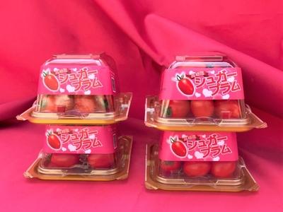 高糖度シュガープラム【ミニトマト】 130gパック 4個セット