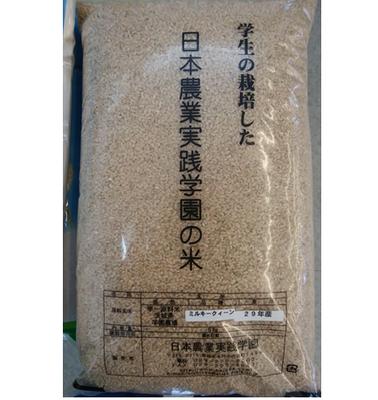 【令和元年産】 ミルキークイーン(玄米) 5kg