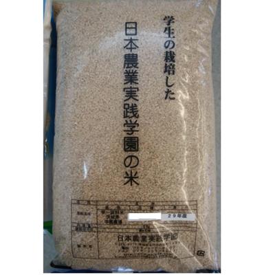【令和元年産】 キヌヒカリ(玄米) 5kg