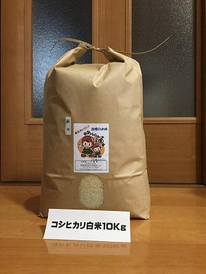 【新米】コシヒカリ   10Kg精米