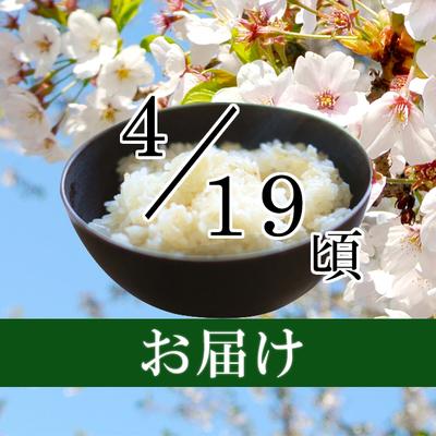 コシヒカリ 5kg・10kg(2019/04/19頃)