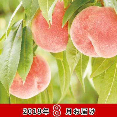 福島の桃(あかつき・なつおとめ・川中島)