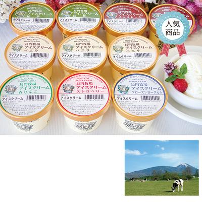 長門牧場アイスクリーム 10個セット