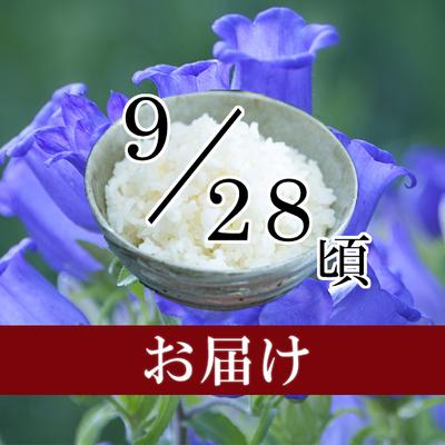 佐渡米コシヒカリ 5kg・10kg(2019/09/28頃)