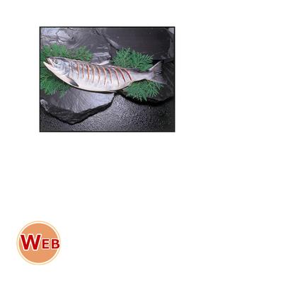 新巻鮭切れ目姿造り2kg