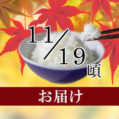 佐渡米コシヒカリ 5kg・10kg(2019/11/19頃)