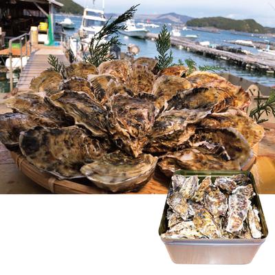 焼牡蠣お徳用詰合せ(簡単缶入り) 2kg