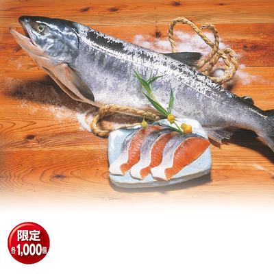 北隆丸ブランド めじか新巻鮭 姿切り身 2.0kg