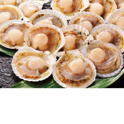 冷凍片貝帆立(20枚)