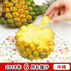 沖縄県産スナックパイン