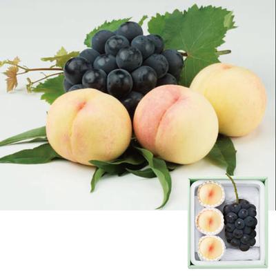 岡山県産 白桃とピオーネ