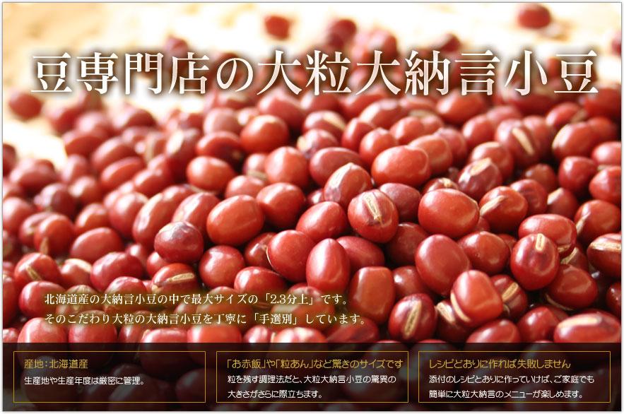 豆専門店の大粒大納言小豆