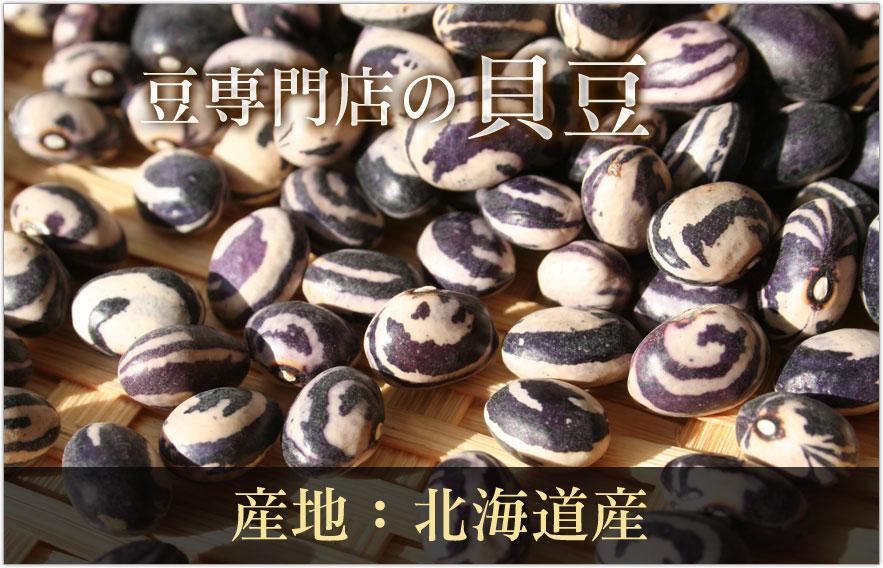 豆専門店の貝豆