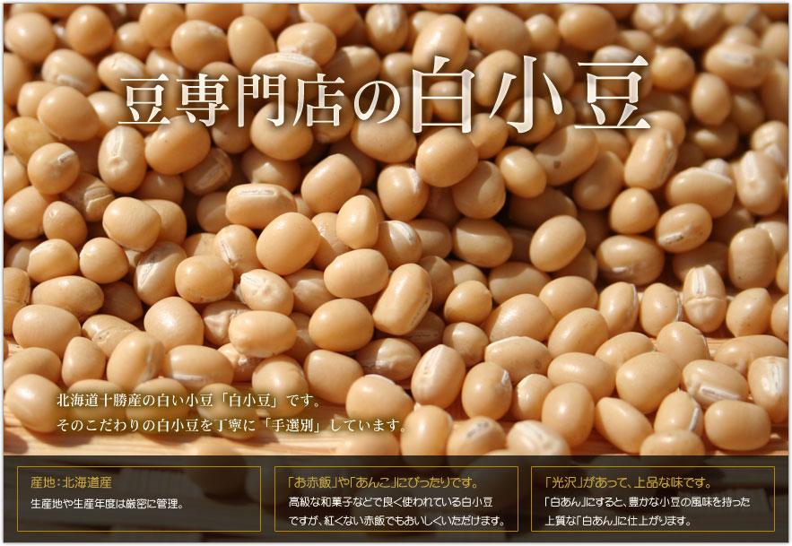 豆専門店の白小豆